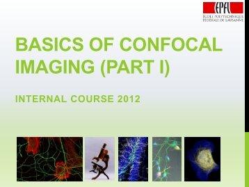 Basics of confocal microscopy - BioImaging and Optics platform ...