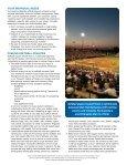 Softball Sports Nutrition - Page 4