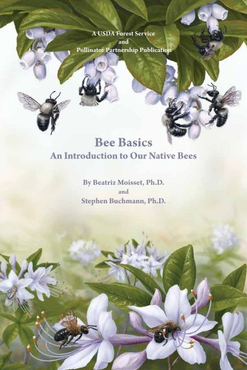 Bee Basics - USDA Forest Service - US Department of Agriculture