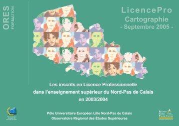 Les inscrits en Licence Professionnelle dans l'enseignement ...