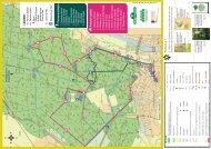 Itinéraires pédestre et cycliste en forêt - Office de Tourisme de Saint ...