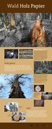 Wald – Holz – Papier