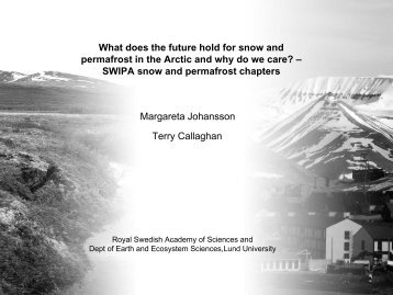 What does the future hold for snow and permafrost in the Arctic and ...