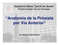 fascia prostática - FMV