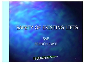 SAFETY NORM FOR EXISTING LIFTS - ELA European Lift ...