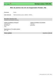 Mine de plomb et de zinc de Goppenstein (Ferden, VS) - admin.ch
