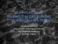 BIO-POLLUTION: HARMFUL ALGAL BLOOMS IN VIRGINIA WATERS