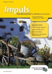 Datei herunterladen (8,25 MB) - .PDF - Buchkirchen