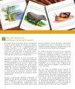 fondo consolidacion fap - Page 2
