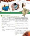 fondo consolidacion fap - Page 3