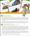 fondo consolidacion fap - Page 5
