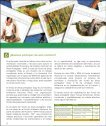 fondo consolidacion fap - Page 6