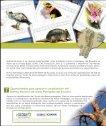 fondo consolidacion fap - Page 7