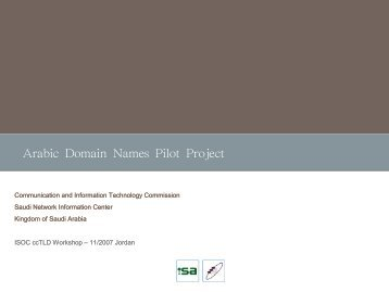 Arabic Domain Names Pilot Project