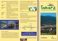 Tabarz Flyer