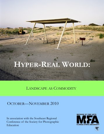 Hyper-Real World - Museum of Fine Arts - Florida State University