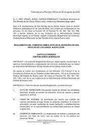 Reglamento del Comercio Ambulante en el Municipio de San N…