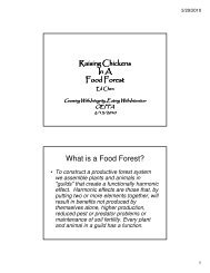 What is a Food Forest? - Ohio Ecological Food and Farm Association