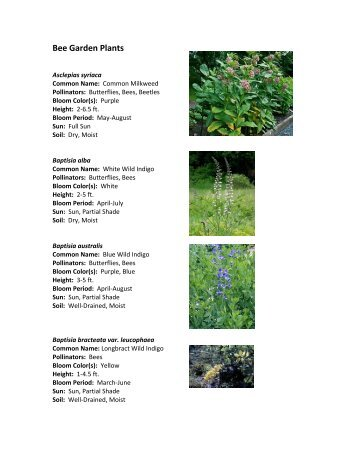 Download the plant list
