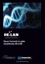 Pecyn Cymorth ar gyfer Gweithredu DE-LAN