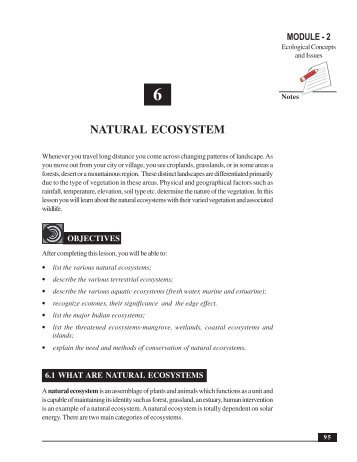 Natural Ecosystem