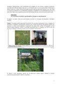 Proiect de cercetare exploratorie – IDEI - CESEC - Page 2