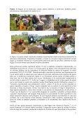 Proiect de cercetare exploratorie – IDEI - CESEC - Page 3