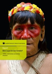 New Hope for the Forest - What Next Forum