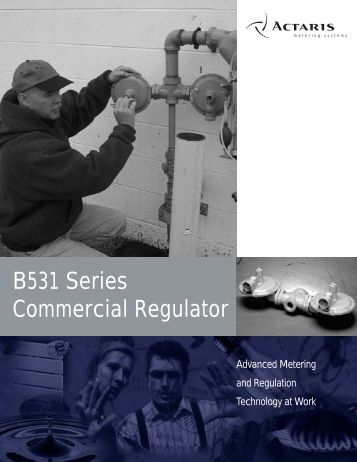 B531 Series Commercial Regulator - Istec Corp.