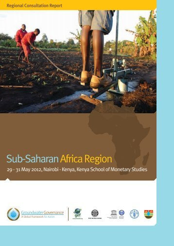 Report of the regional consultation for sub-Saharan ... - Hydrology.nl