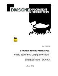 sintesi non tecnica - Valutazione Ambientale - Regione Piemonte
