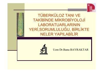 + + M.tuberculosis