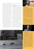 Zeehonden aan de Belgische kust - Zoogdierwinkel - Page 6