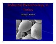 Industrial biotechnology in Turkey: industry point of ... - Bio-Economy