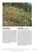 Siikajokilaakson perinnemaisemia - ProAgria Oulu - Page 7