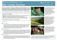 Bin Combe - Butterfly Walk - Walk4Life