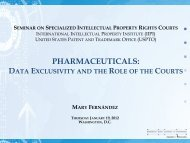 Mary Fernandez - International Intellectual Property Institute