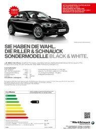 Angebote als PDF herunterladen - Riller & Schnauck