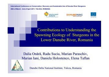 Contributions to Understanding the Spawning ... - DANUBEPARKS