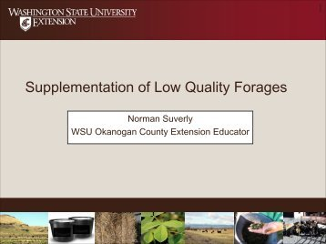 Supplementation Of Low Quality Forages - LivestockTopics ...