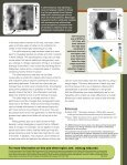 Yield Mapping and Use of Yield Map Data - Page 4