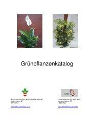 Grünpflanzenkatalog - GARTENSHOP.at