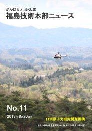 福島技術本部ニュース 第11号 - 独立行政法人 日本原子力研究開発 ...