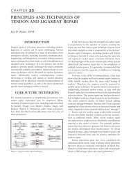 principles and techniques of tendon and ligament repair