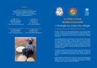 Dépliant PTF Guinée - RIAED
