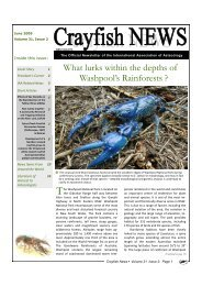 Crayfish News : volume 31 issue 2 - June 2009 - Crayfish of Romania