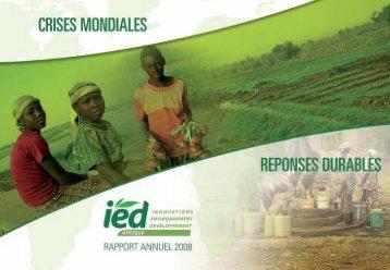 Rapport Annuel 2008 - IED afrique