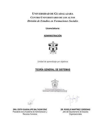AD138_Teoria General de Sistemas 2011-B - Centro Universitario ...