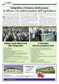 di… - Confagricoltura Alessandria - Page 7