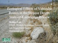 Ecological Effects of Vehicular Routes in the Mojave Desert: State-of ...